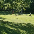 aire-jeux-lapin-nature-domaine-gil